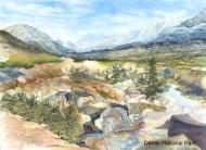 Denali Vista