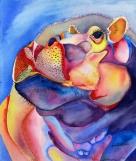 Loo, Florida's Hippo